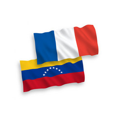 flags france and venezuela on a white vector image