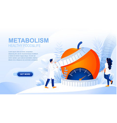metabolism flat landing page with header vector image