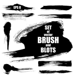 Set of brush vector image