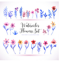set watercolor florals and brunch on a white vector image