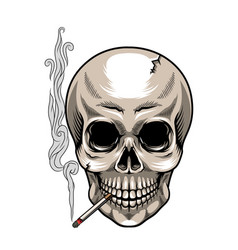 skull with cigarette on white background vector image