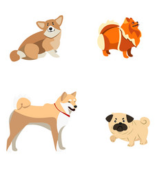 set of different dogs vector image