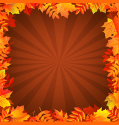 Autumn background with leaves border vector