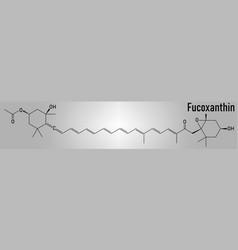 Fucoxanthin molecule skeletal formula vector