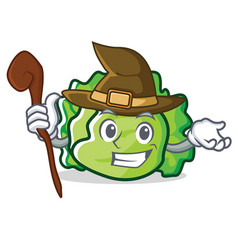 Witch lettuce character cartoon style vector