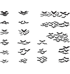 Bats flying vector image vector image