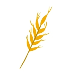 ear of wheat icon vector image