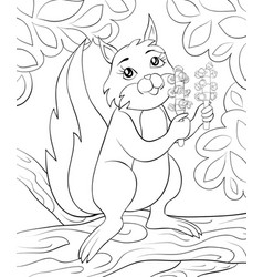 A children coloring bookpage a cute squirrel on vector