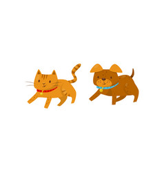 funny dog and cat running together cute domestic vector image