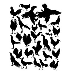 hen and rooster silhouette vector image