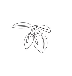 one single line drawing pile healthy organic vector image