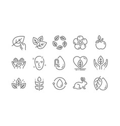 Organic cosmetics line icons no alcohol vector