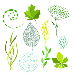 set various stylized green leaves and elements vector image