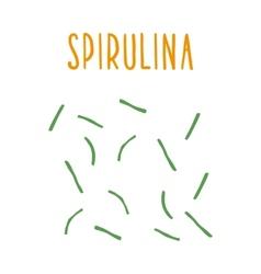 Spirulina vector