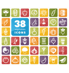 Vegetables outline icons set vector