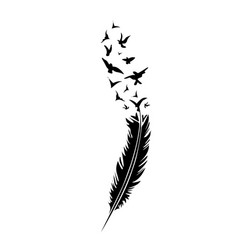 black-and-white feather on white backround vector image