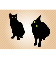 Black cats on the background vector