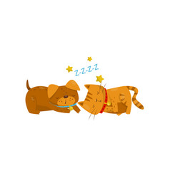 funny dog and cat sleeping on the floor cute vector image