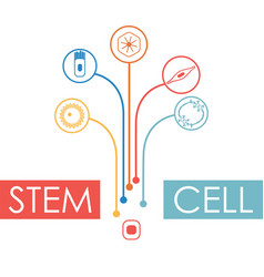 human cell type set vector image