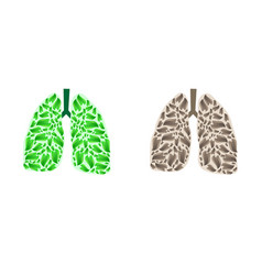 lungs silhouette with leaves vector image