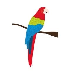 Parrot animal bird vector