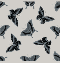 Seamless pattern with hand drawn stylized papilio vector