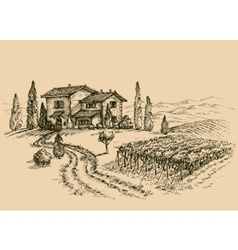 Vineyard drawing Traditional farm sketch vector image