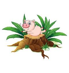 A pig balancing above a wood vector image