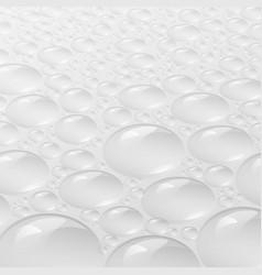 Background design white bubble vector