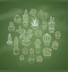 Cacti and succulents round vector