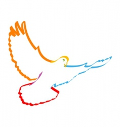 colorful dove vector image