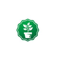 Plant in pot with some leaves for logo design vector