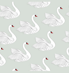 seamless pattern with white swans white bird vector image