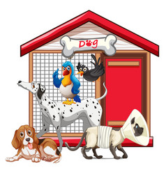 set pet with its house vector image