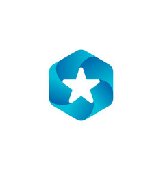 star hexagon logo icon badges vector image