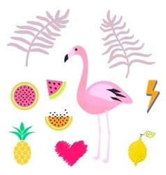 Summer pink flamingo clipart icon set vector