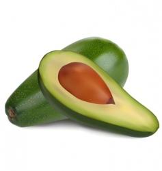 ripe avocado vector image