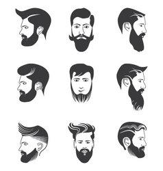 Mens beard and hairstyles vector image