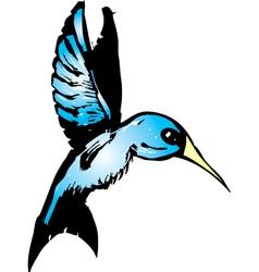 Blue Hummingbird vector image