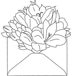 Flowers in envelope minimalist print newborn line vector