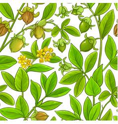 Jojoba branches pattern on white background vector