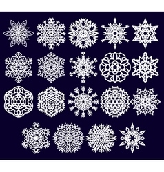 Set of the snowflakes vector image