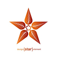 Abstract design element star with red autumn leafs vector image