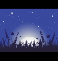 poppy meadow at night vector image vector image