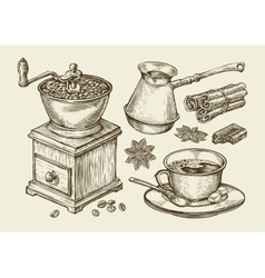 Hand drawn coffee grinder cup beans star anise vector image