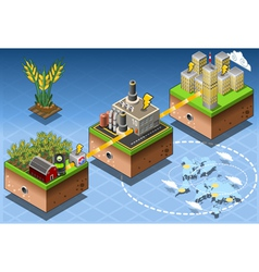 Isometric Infographic Biomass Source Renewable vector image