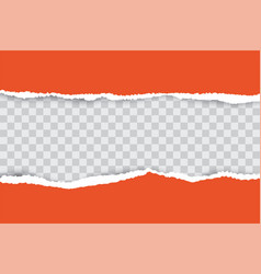 orange ripped paper background with transparency vector image