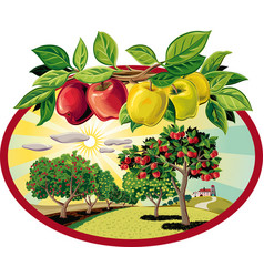 Oval frame with branch of apples and orchard vector