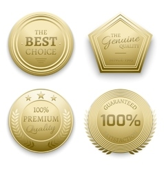Polished gold metal badges vector image