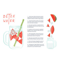 detox water with watermelon vector image